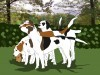 English foxhound dog pack wallpaper